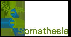 Soma Thesis Logo